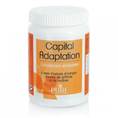Capital Adaptation