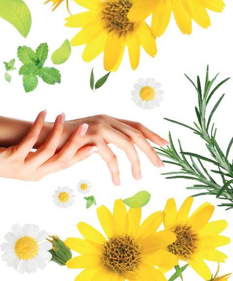 main soin bio