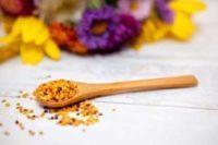 pollen, ménopause, progestérone, bouffée de chaleur